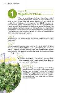 Week 1 | Vegetative Phase - Day by Day Perfect Cannabis Production Guide