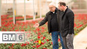 Plants Unlimited confía en Berger para obtener cultivos uniformes, temporada tras temporada