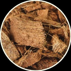 Fibre de coco