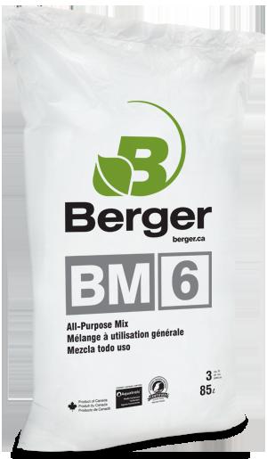 : BM6 Cannabis